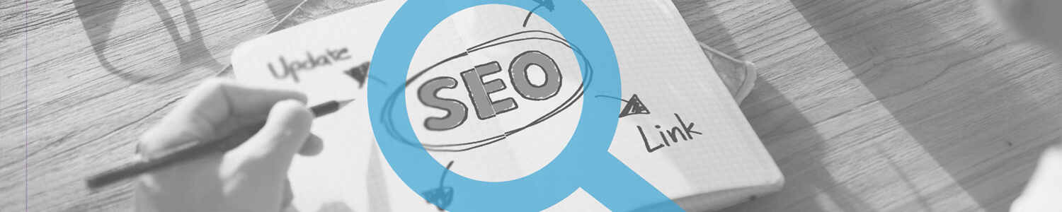 SEO Certification Training in udaipur