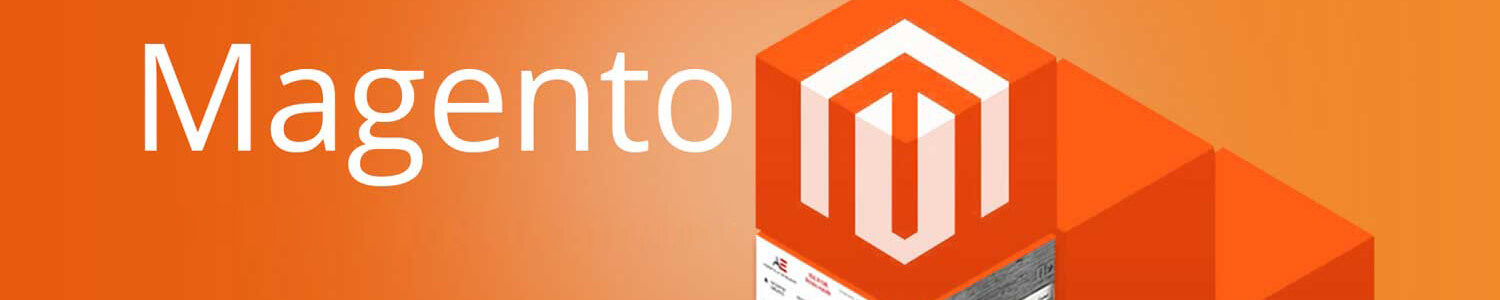 Magento Ecommerce Certification Training in Udaipur
