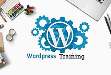wordpress-training-in-udaipur